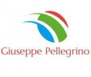 Giuseppe Pellegrino